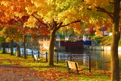 Lyons Southside Canal Park (1024x725)